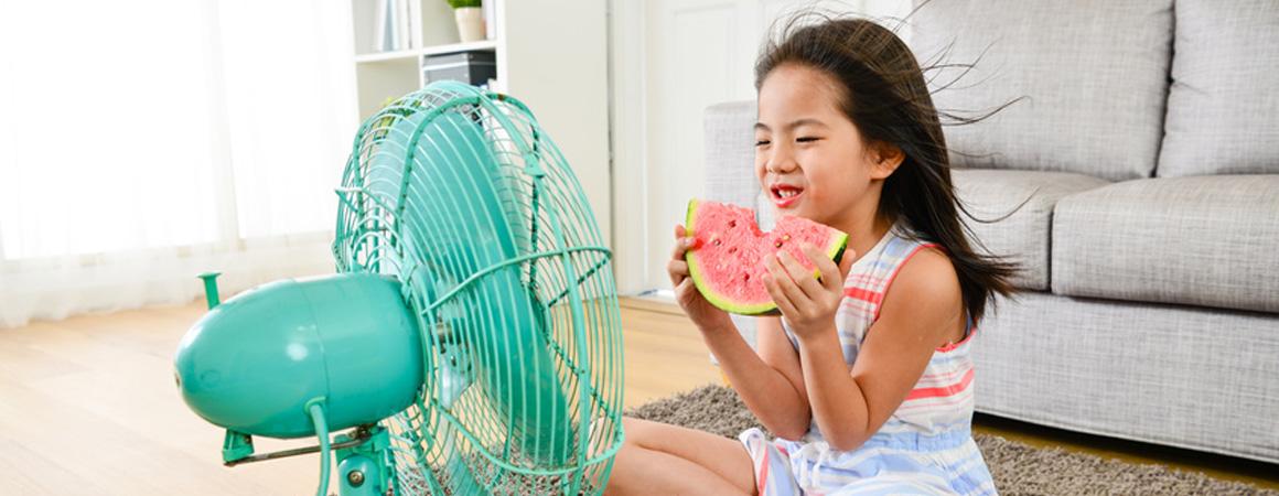Nichts bringt in den heißen Monaten so ein Frische-Vergnügen wie ein VASNER Ventilator