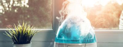 Optimale Luftfeuchtigkeit Tabelle und Tipps
