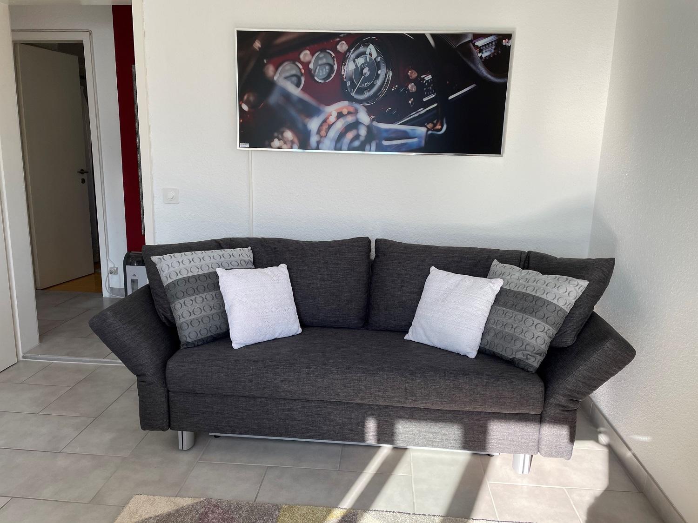 Ein Kunde verwendet die Infrarot Bildheizung Panora von VASNER in seinem Wohnzimmer